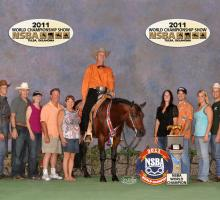 2011 WORLD CHAMPIONSHIP SHOW ~ Jr. Western Riding with Gil Galyean