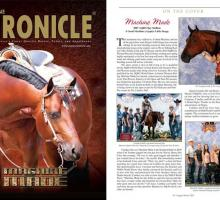 August 2011 ~ The Equine Chronicle